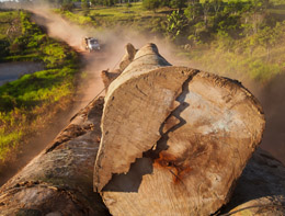 Du difficile arrêt de la déforestation @ Agora Hydro Québec